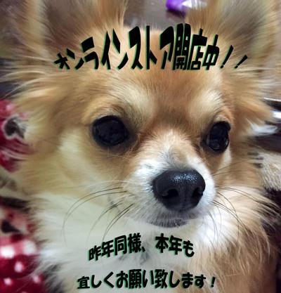 小太郎君正月用のコピー.jpg