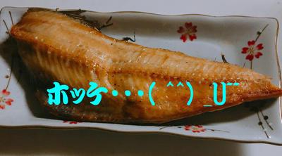 ホッケsdのコピー.jpg