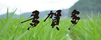 bnr_takata_2240xauto-407.jpg